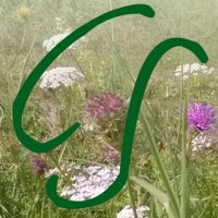 Conny Schermer – Naturpädagogin